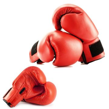 Picture of Boxing glove